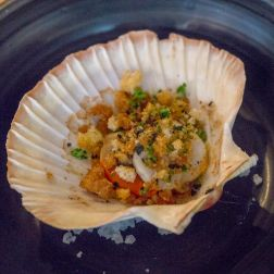 Scallop from the specials board